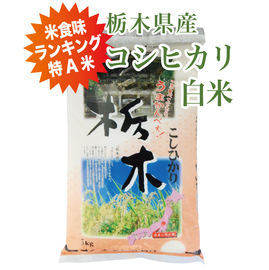 コシヒカリ10kg白米