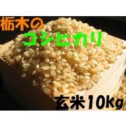 【送料一律700円】【平成22年産】 栃木県産 コシヒカリ 玄米 10kg